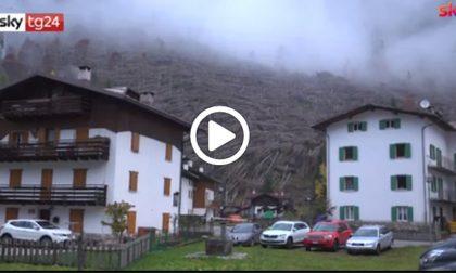 Tempesta Vaia, l'albero di Natale del Papa arriverà dal Veneto
