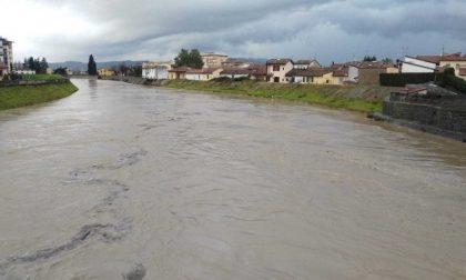 Piogge record, allerta per i fiumi in piena in Veneto