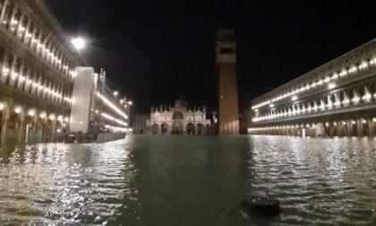 Acqua alta a Venezia, Verona pronta a dare una mano