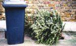 Ri-albero, il progetto per smaltire correttamente i vecchi alberi di Natale