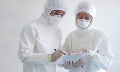 Variante brasiliana: studio dell'università di Verona dimostra una maggiore mortalità dai 20 ai 49 anni