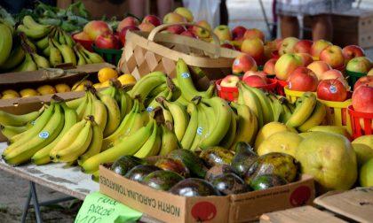 I negozi che consegnano la spesa a domicilio a Verona: Frutta e Verdura Renna Agata