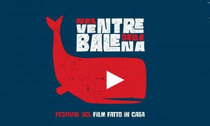"""""""Nel ventre della balena"""", progetto di Fondazione Cariverona per gli studenti"""