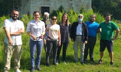 Forte San Procolo: scoperte numerose specie spontanee, richiesta la preservazione della biodiversità