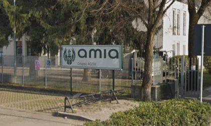 Verde domestico a Verona, Amia potenzia il servizio: la raccolta da quindicinale diventa settimanale