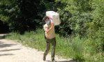 Maratona dello staff nel Parco Natura Viva, raccolti 2mila dollari per il panda rosso FOTO