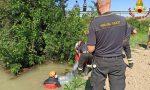 Auto finisce nel canale e prende fuoco, trovato 53enne di Villa Bartolomea senza vita
