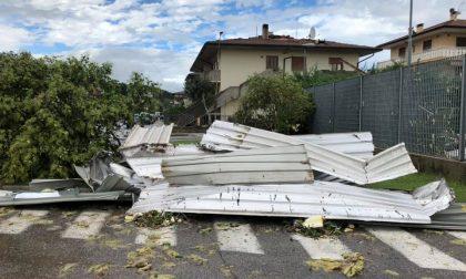 ANA Verona da Montecchia di Crosara al monitoraggio dell'Adige, numerosi interventi