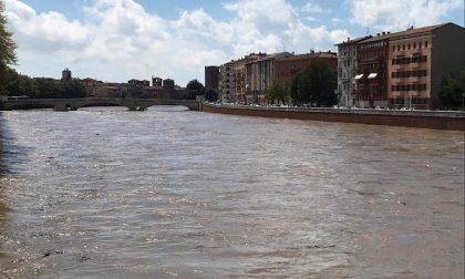 """Massima allerta a Verona, attesa la piena dell'Adige, Sboarina: """"Invito i cittadini alla prudenza"""""""