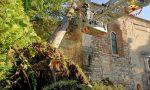 Grosso cipresso appoggiato sul tetto della chiesa di San Procolo, intervengono i Vigili del fuoco – VIDEO