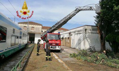 Maltempo in Veneto: oltre 180 interventi dei Vigili del fuoco nella regione – FOTO