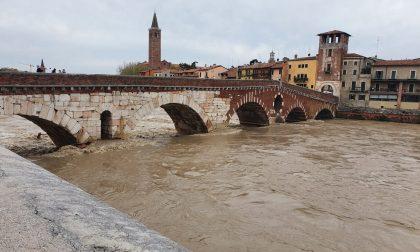 """Ordine Ingegneri Verona: """"Pericolo detriti in Adige, serve pulizia dell'alveo per evitare criticità"""""""