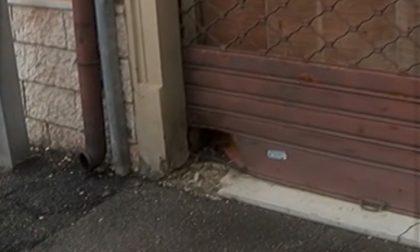 Forte boato nella notte a Tombetta: esplosione davanti a un vecchio negozio