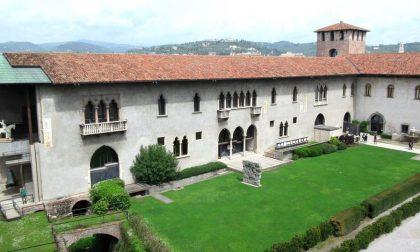 Biblioteca d'Arte del Museo di Castelvecchio, da martedì riapre al pubblico