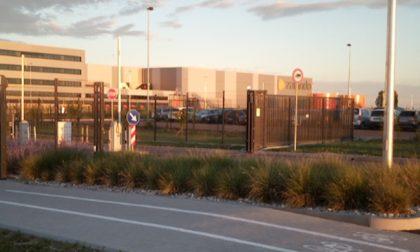 """Bigon (PD) su Zalando: """"Chiarezza su contratti di assunzione e condizioni di lavoro"""""""
