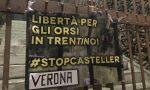 """""""Libertà per gli orsi del Trentino!"""": anche nel Veronese striscioni contro la detenzione di M49, M59 e DJ3"""