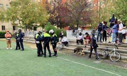 """Blitz al campetto, identificati 22 minorenni. Sboarina: """"Gruppo di giovani molesti"""""""