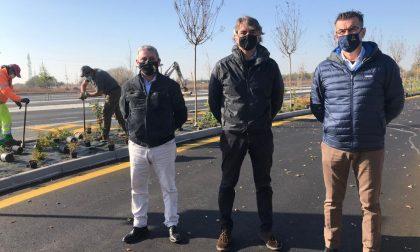 Mille posti auto in più a Verona Sud: saranno gratis e con navetta
