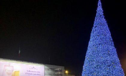 """Acceso il grande albero di Natale Bauli, Sboarina: """"Tradizione che dà forza ai veronesi"""""""