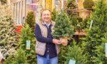 Progetto Ri-albero: 300 vecchi alberi di Natale smaltiti correttamente