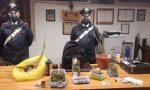 Coltivazione e detenzione di marijuana: 20enne arrestato a San Pietro in Cariano