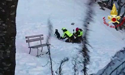 Monte Baldo, precipitano in un dirupo durante la caccia: due cani salvati dall'elicottero Drago 82