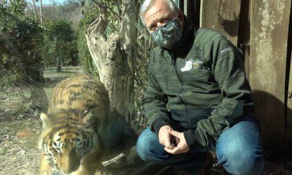 Contagi in aumento, Parco Natura Viva costretto a positicipare la riapertura