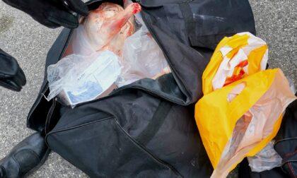 Sequestrati 250 chili di generi alimentari trasportati in violazione delle norme igienico-sanitarie