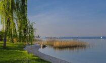 Partito a Bardolino il progetto biennale per la tutela dell'ecosistema lacustre