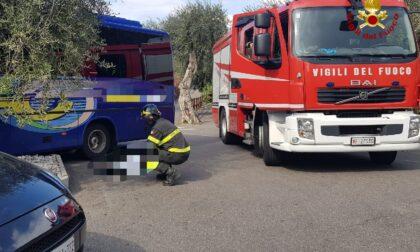 Tragedia a Malcesine: autista muore schiacciato dal proprio autobus