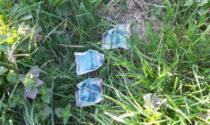 Trovate numerose esche topicida lungo un fossato a Nogara