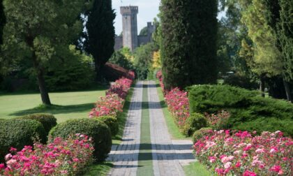 Parco Giardino Sigurtà riapre: si potranno ammirare in sicurezza i tulipani e altri tesori naturalistici