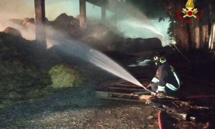 Le foto e il video del grosso incendio in un fienile a Minerbe: salvate 500 mucche