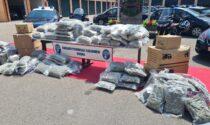 Camion pieni di droga: sequestrati 232 chili di marijuana