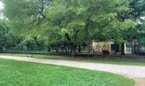 Approvato l'atto di indirizzo per valorizzare il parco di Legnago