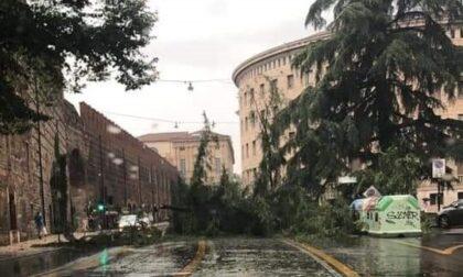 In arrivo in Veneto 10,8 milioni dal Governo per i danni causati dal maltempo nell'agosto 2020