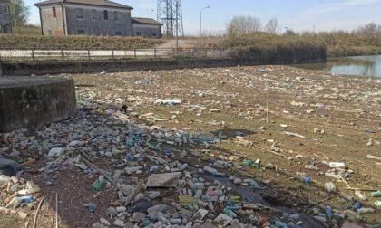 """Rifiuti di plastica nel Canalbianco, Bigon (PD): """"Urgente bonificare l'area"""""""