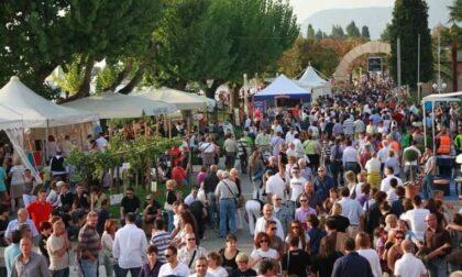 Annullata la festa dell'uva e del vino 2021 di Bardolino