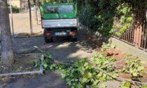 Danni maltempo a Verona e provincia: Zaia avvia lo stato di crisi e calamità per le attività colpite