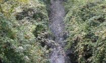 Svolta green a Castelnuovo del Garda: ampliato il Parco del Tione
