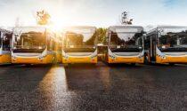 Calano le immatricolazioni degli autobus: Verona maglia nera