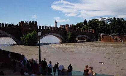 """Attesa la piena dell'Adige, picco previsto a Verona e Legnago. Sboarina: """"Chiuse le alzaie"""""""