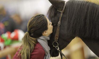 Fieracavalli 2021: doppio weekend  per la 123esima edizione del salone dedicato al mondo equestre