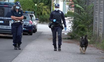 Traffico di cocaina a Borgo Venezia: arrestato per spaccio il titolare di un bar