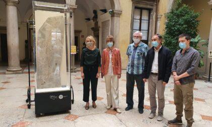 Eccezionali reperti di Bolca in mostra al museo di storia naturale